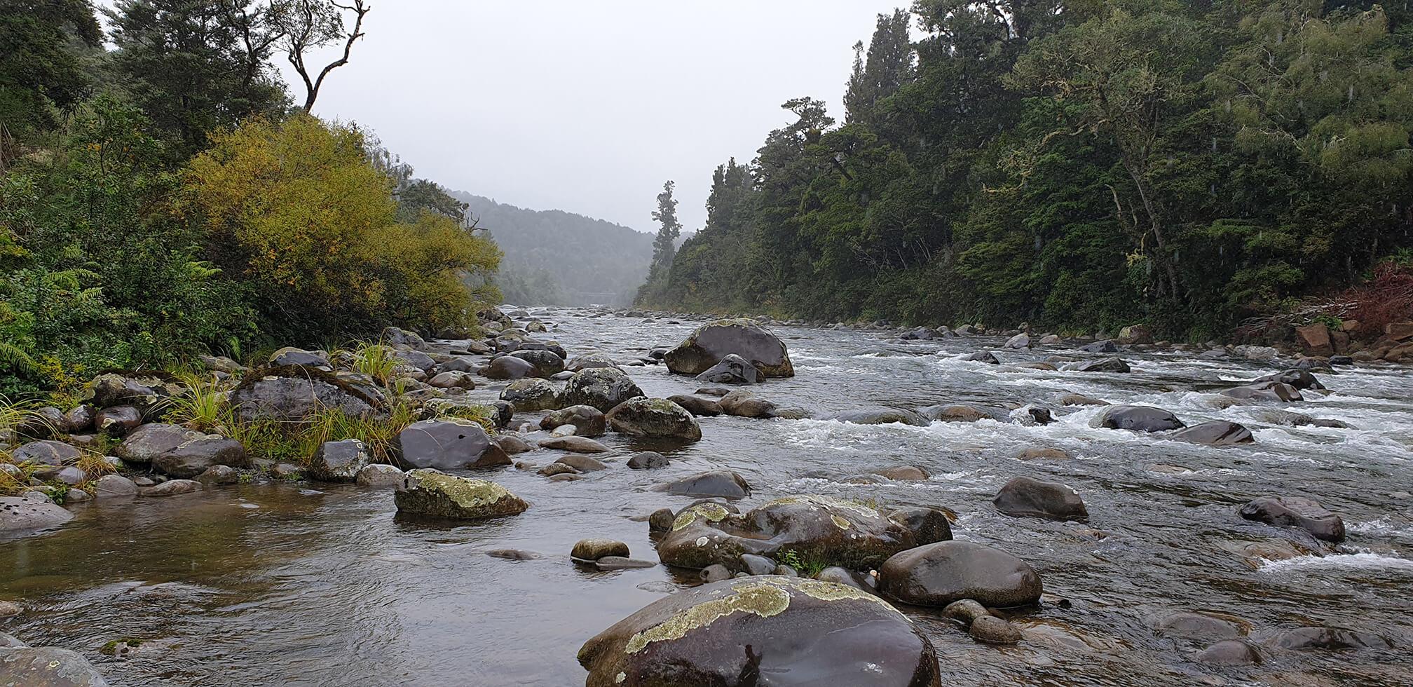 whakapapa river - fly fishing